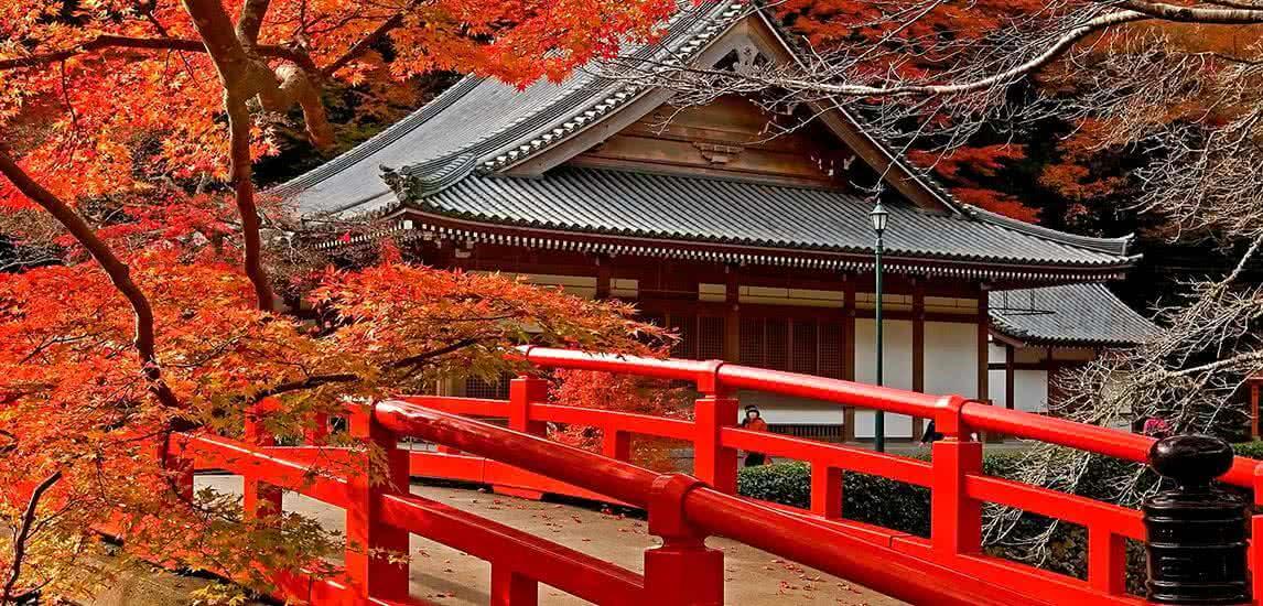 la mejor epoca para visitar japon