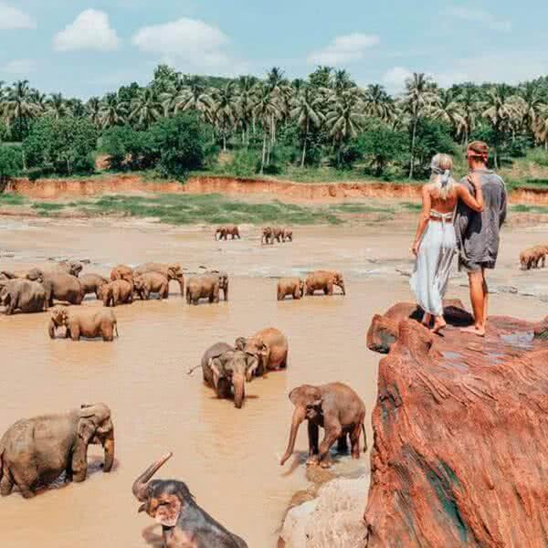 Sri Lanka yMaldivas