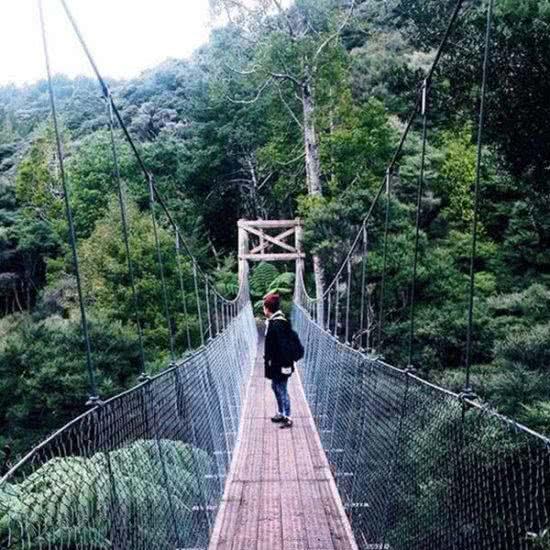 Nueva Zelanda naturaleza