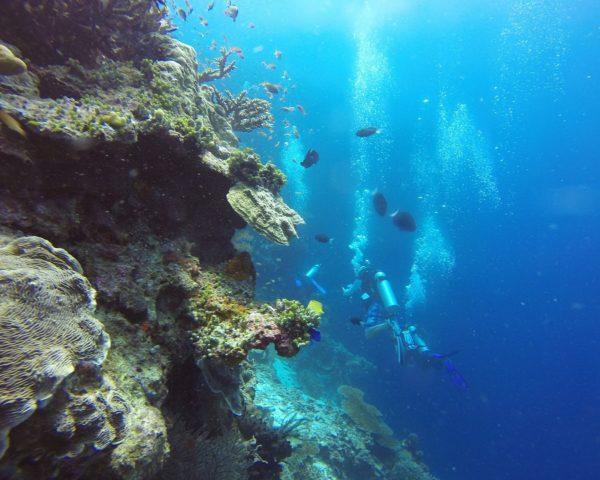 Buceo en Bali