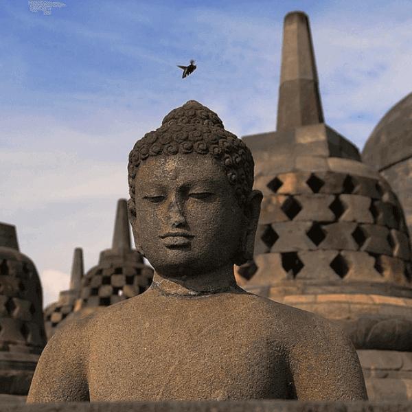Java, Ubud y Komodo