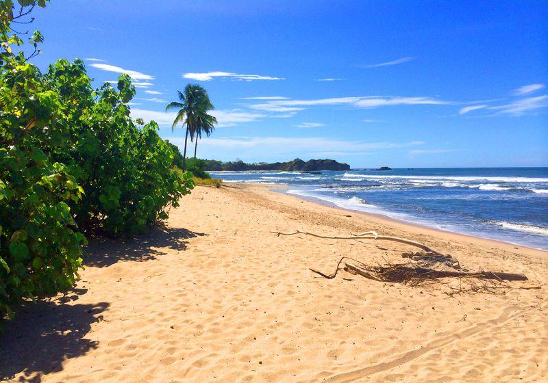 playa de nosara desde el hotel lagarta lodge en costa rica