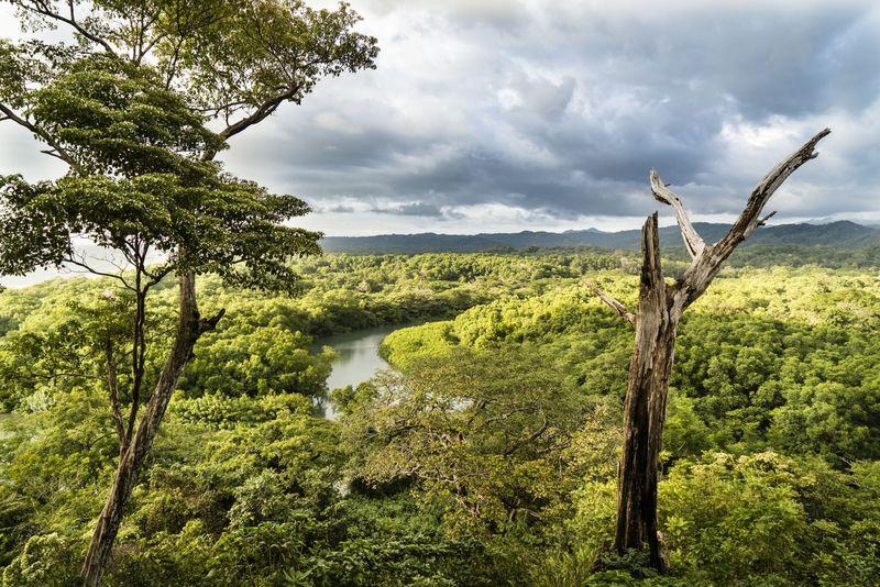 naturaleza en estado puro en Costa Rica